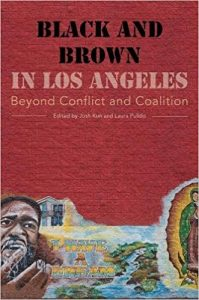 Laura Pulido, Josh Kun: Black and Brown in Los Angeles: Beyond Conflict and Coalition (UC Press, 2013)